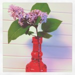 Little lilacs